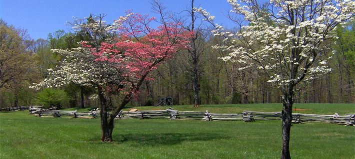 Spring at Appomattox Court House NHP