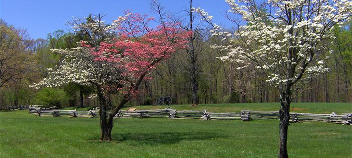 Appomattox County Va Home